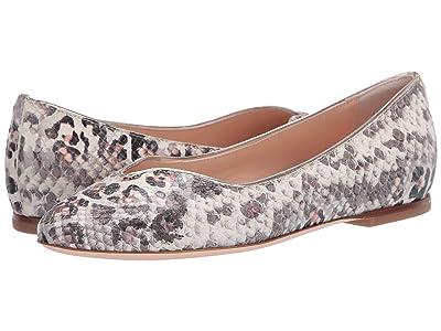 AGL Leopard Ballet Flat (Leopard Thaij) Women