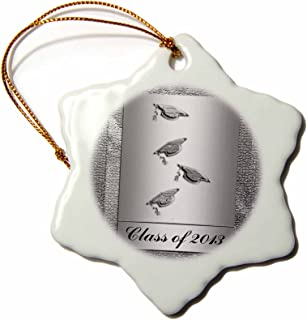 3dRose orn_43445_1 Class of 2013 Caps with Tassels Silver Snowflake Decorative Hanging Ornament, Porcelain, 3-Inch