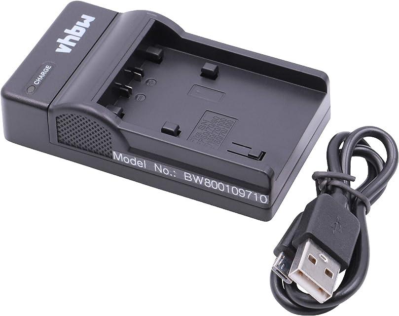 vhbw Micro USB Cable de Carga para cámara Sony Handycam DCR-HC19E DCR-HC1E DCR-HC20 DCR-HC20E DCR-HC21 DCR-HC21E DCR-HC22.