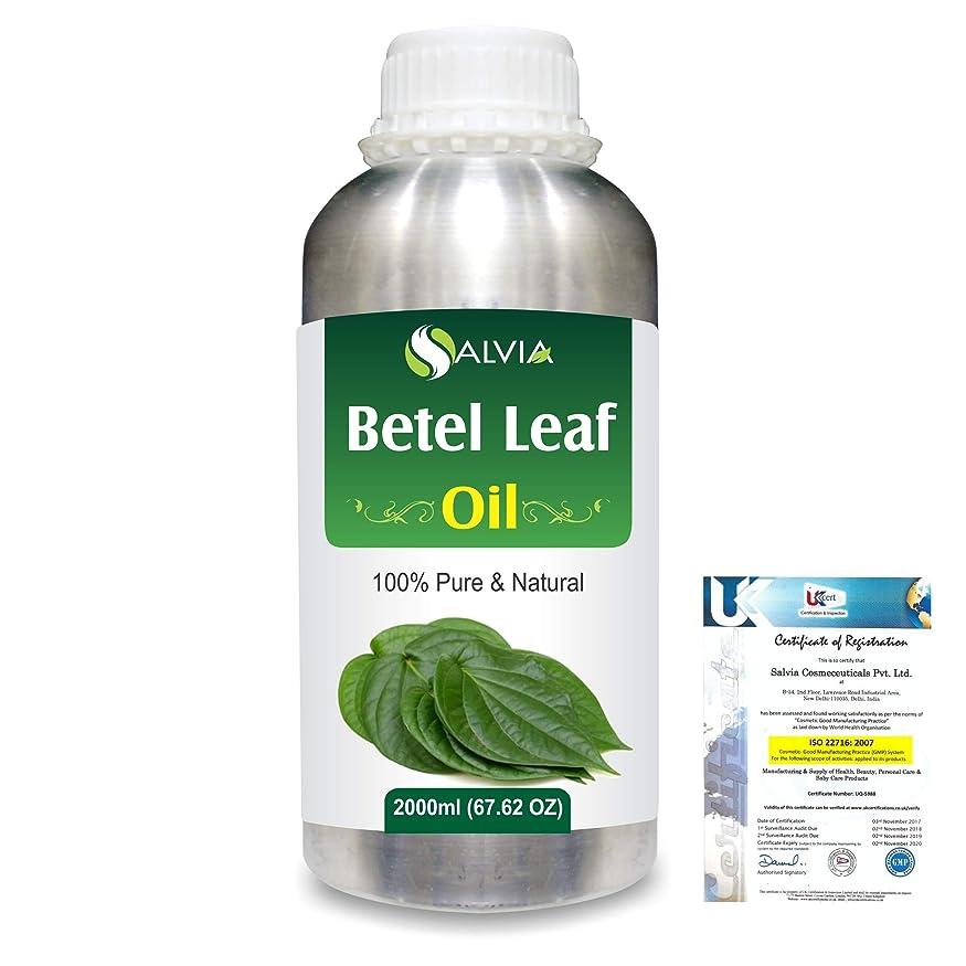 生息地効果的に靴下Betel Leaf (Piper Betle) 100% Natural Pure Essential Oil 2000ml/67 fl.oz.