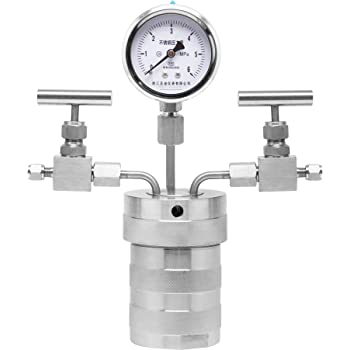 BAOSHISHAN Hydrothermal Synthesis Autoclave Reactor Can Connected Hydrogen Gas with PTFE Lining Pressure Gauge for 240C 6MPa (100ml)