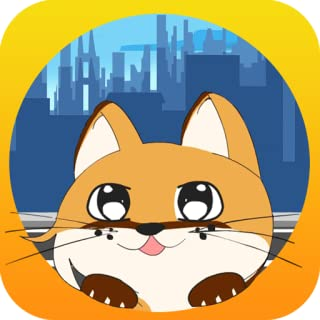 Kitty Cat and the City: Cute Pet in hunt for Food