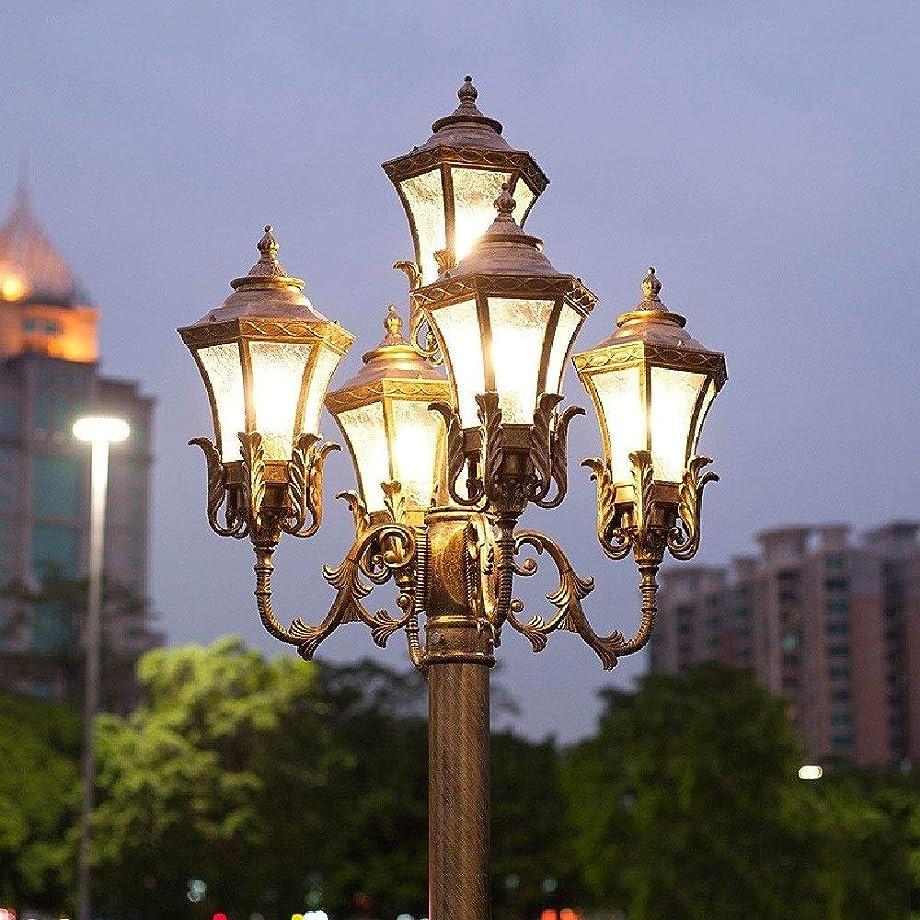 性差別もう一度株式Fxny 5-ヘッドビクトリア朝の屋外の風景ハイポール街灯ヨーロッパの伝統的なレトロなアルミニウム金属ガラスカラムポストランプガーデンアンティークランタン景観道路照明E27 (サイズ : H-200cm)
