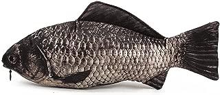 Bullidea Carp Fish Shaped Zipper Pencil Case Novelty Make Up Holder Pouch for Boys Girls Kids Children Students