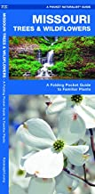 Missouri Trees & Wildflowers: A Folding Pocket Guide to Familiar Plants (Pocket Naturalist Guides)