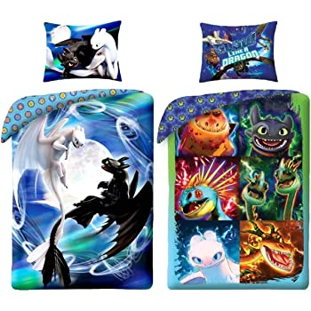 How To Train Your Dragon 2 Pillow Case