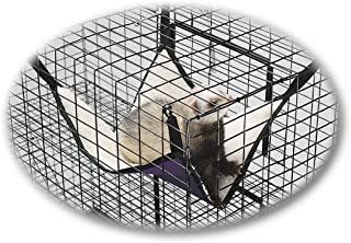 Kreature Comfort Ferret Siesta Hammock 15 x 21 (Assorted Colors)