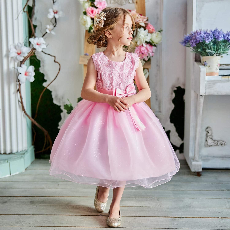 Buy TTYAOVO Flower Girls Dresses Toddler Princess Wedding Party ...