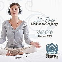 Summer 2011 Meditation Challen