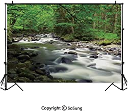 6x6Ft Vinyl Lake House Decor Backdrop for Photography,Rushing Riverbed in Forest with Rocks Trees Mountain Branches Shrubs Nature Background Newborn Baby Photoshoot Portrait Studio Props Birthday Part