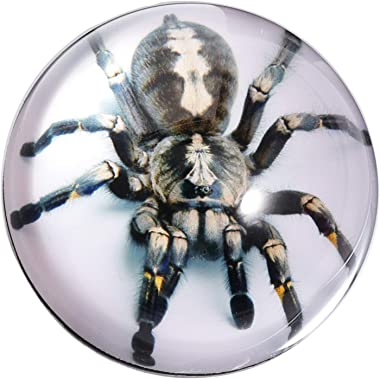 Waltz&F Crystal Tarantula Spider Paperweight Galss Globe Hemisphere Home Office Table Decoration 2.7''