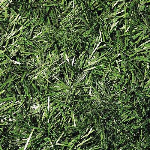 Catral 43020007 Seto Artificial Excel, Verde, 300 x 3 x 100 cm