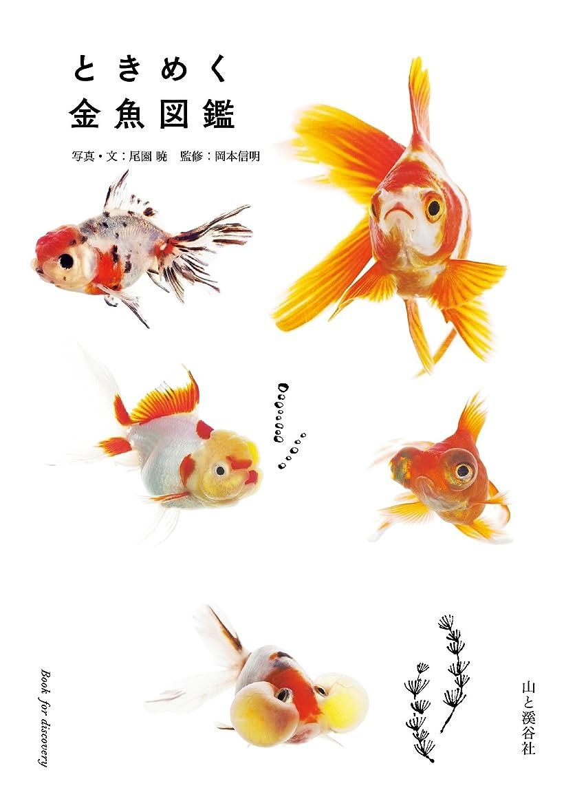支援するシットコム謎ときめく金魚図鑑 ときめく図鑑