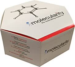 Molecularity Student Organic Chemistry Molecular Model Kit (100+ Atoms and 200+ Pieces)