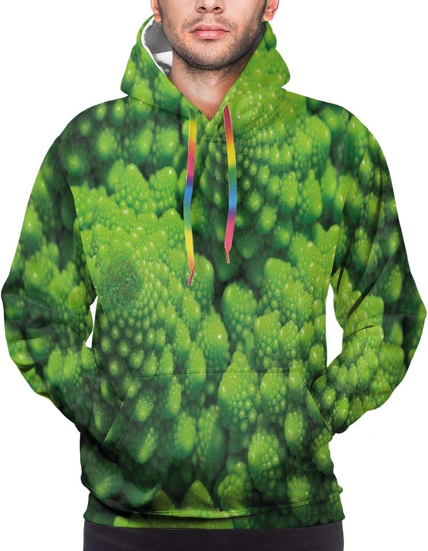 Men's Hoodies Sweatshirts,Broccoli Kale Mother Earth Herbs Themed Fractal Background Foliage Modern Design,XX-Large