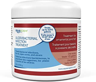 Aquascape 81038 Ulcer and Bacterial Dry Treatment for Pond Fish, 8.8 Ounces