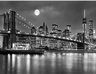Papel Pintado Fotográfico New York 352 x 250 cm Tipo Fleece no-trenzado Salón Dormitorio Despacho Pasillo Decoración murales decoración de paredes moderna - 100% FABRICADO EN ALEMANIA - 9101011b