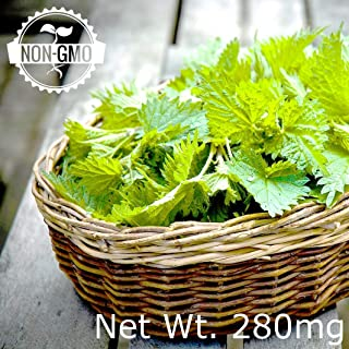Gaea's Blessing Seeds - Organic Lemon Balm Seeds 500+ Seeds Net Wt. 280mg Non-GMO 86% Germination Rate Melissa Officinalis