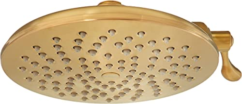 discount Moen S6320EPBG Velocity Two-Function 8-Inch 2021 Diameter Eco-Performance Showerhead with sale Immersion Rainshower Technology, Brushed Gold online