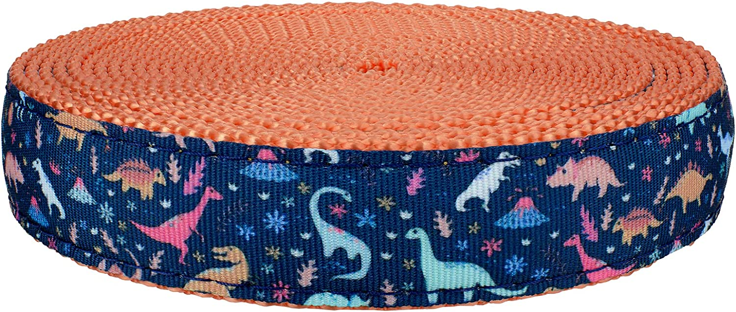 Country Brook Design Challenge the lowest price of Japan 5 ☆ popular - Dinosaurs on Ribbon Webbing Coral Nylon
