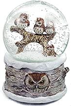 musical owl snow globe