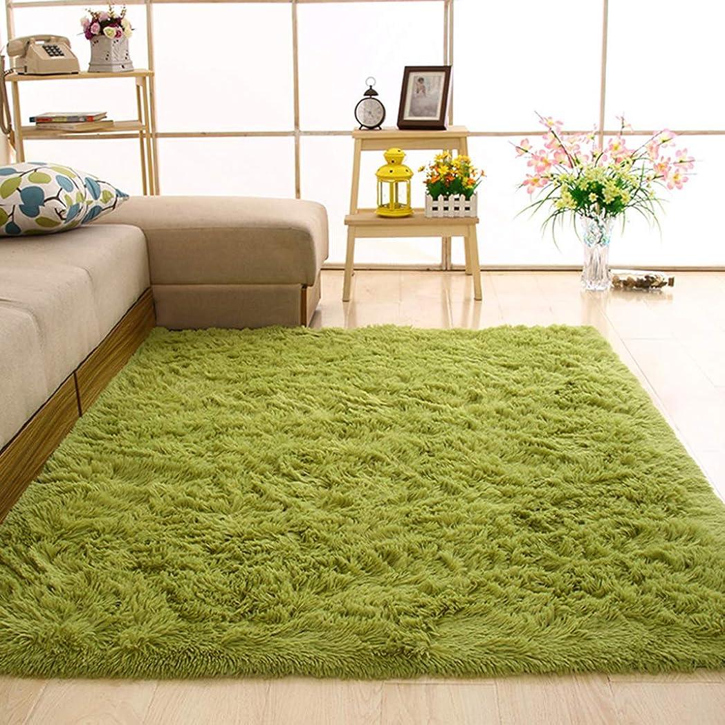 病テレビ局謎GXH- 長方形の緑の寝室のカーペット - 柔らかいふわふわ畳のベッド毛布、芝生子供クロールマット通気性、環境に優しい