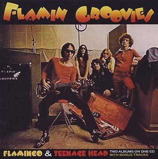 FLAMINGO / TEENAGE HEAD (IMPORT)