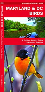 Maryland & DC Birds: A Folding Pocket Guide to Familiar Species (Wildlife and Nature Identification)