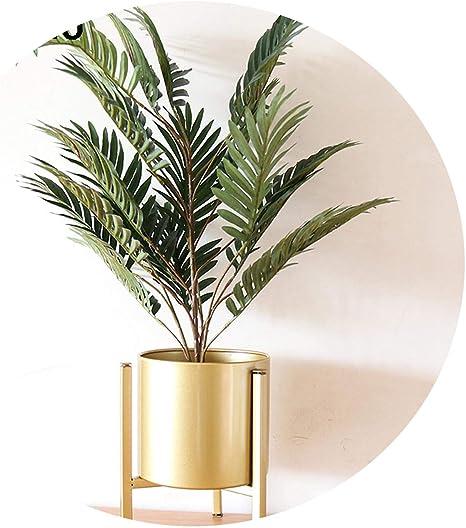 Amazon Com Large 70 Cm Artificial Phoenix Bamboo Palm Plant Tree Bonsai Green Plants Wedding Home Office Shop Decor Home Kitchen