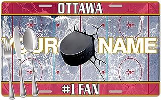 ottawa 4 on 4 hockey