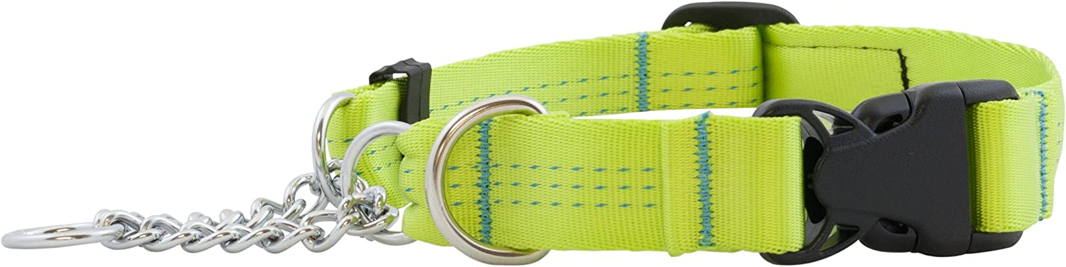 Canine Equipment Technika 1Inch Quick Release Martingale Dog Collar, Large, Lime