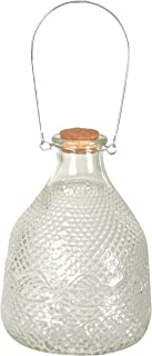 glass wasp catcher bottle