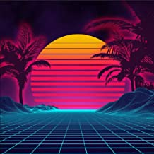 Retro 1980s Summer Landscape Photo Backdrop for 80s Sci-Fi Party Palm Tree Sunset Cyber Surface Technology Photography Background Booth Studio Shoot Pictures 8x8 ft 707