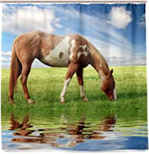 Blue Viper Horses Graze in The Beautiful Grasslands Home Decorations Shower Curtain 72 x 72 inch Waterproof Polyester for Bathroom Shower Curtain Set with Hooks