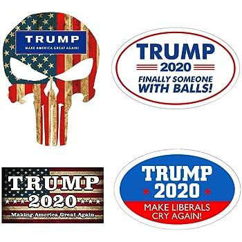 TRUMP 2020 STICKER COMMON SENSE AND LIBERALISM DECAL WINDOW BUMPER ELECTION