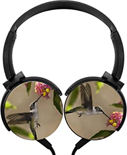 Headphone Animals Hummingbird Lightweight Headset Wired Headphones with Mic Over Ear Cute Women's Stereo Headsets for Trav... photo