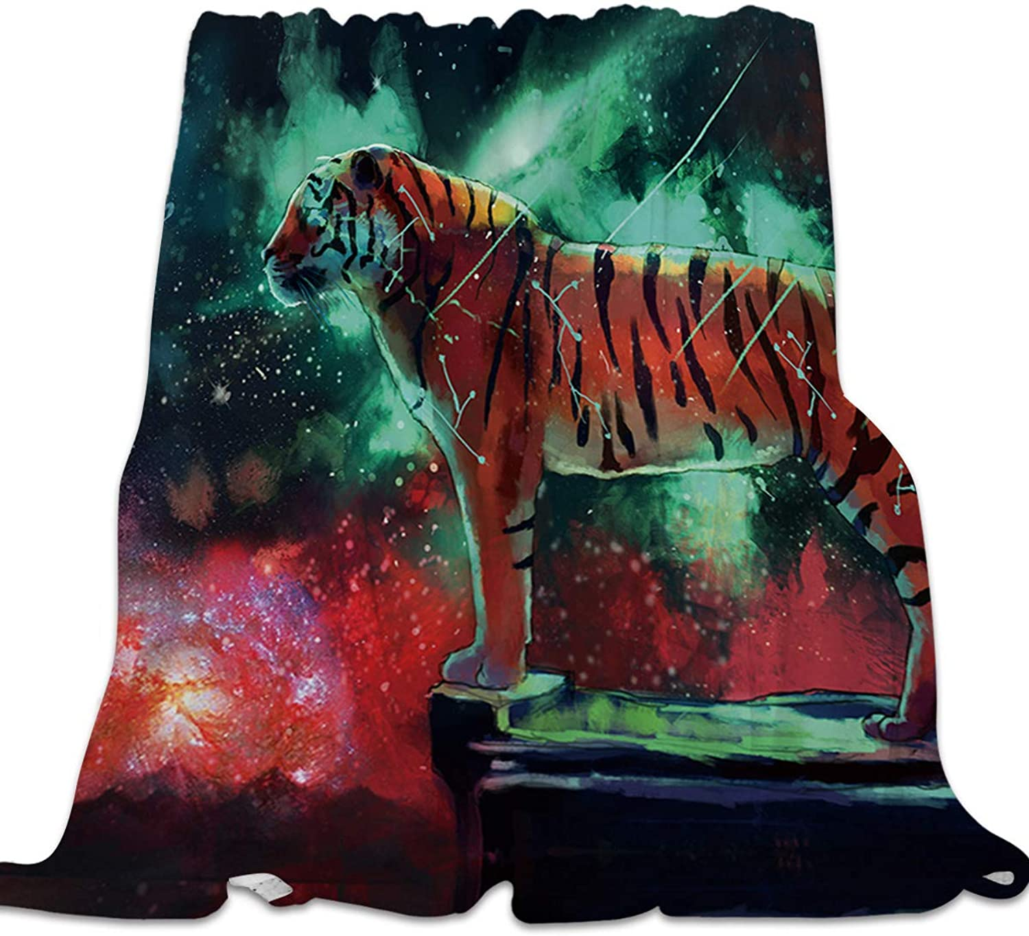 YEHO Art Gallery Flannel Fleece Bed Blanket Super Soft Cozy ThrowBlankets for Kids Girls Boys,Lightweight Blankets for Bed Sofa Couch Chair Day Nap,colorful Tiger Animal Universe Pattern,49x59inch