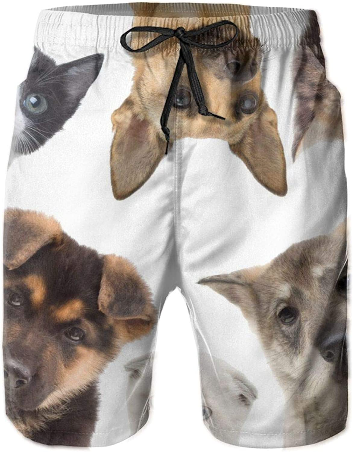 Yt92Pl@00 Large special price !! Men's 100% Polyester Pets Casual Sh Board Special price for a limited time Trunks Swim