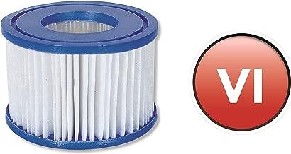 Cartuchos de filtro de repuesto para Lay-Z-SpaTM