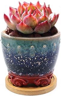 unusual bonsai pots