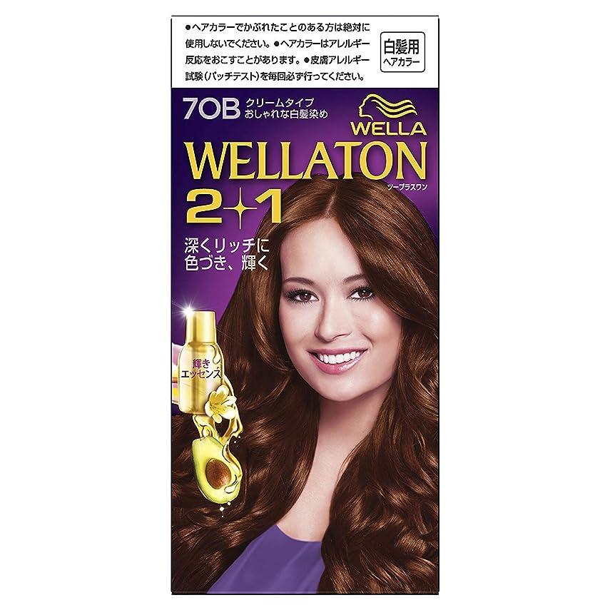 成人期政治的大陸ウエラトーン2+1 白髪染め クリームタイプ 7OB [医薬部外品] ×6個