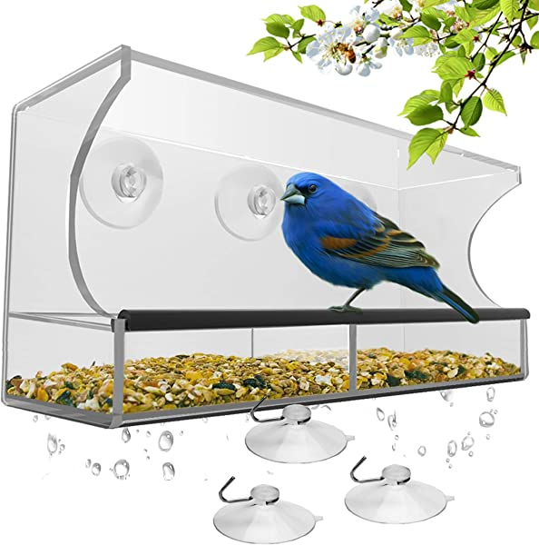 Window Bird Feeder With Strong Suction Cups And Seed Tray Outdoor Birdfeeders For Wild Birds Finch Cardinal And Bluebird Large Outside Hanging Birdhouse Kits Drain Holes 3 Extra Suction Cups
