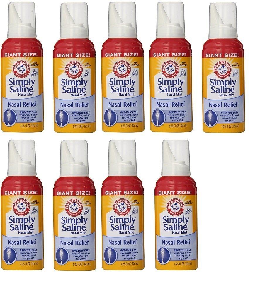 Max 43% OFF Arm Hammer Simply Saline Nasal Relief Giant Mist Spray- - Regular discount Size