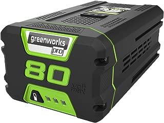 Best greenworks 60v battery charger Reviews