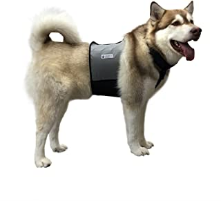 cooling vest for large dogs