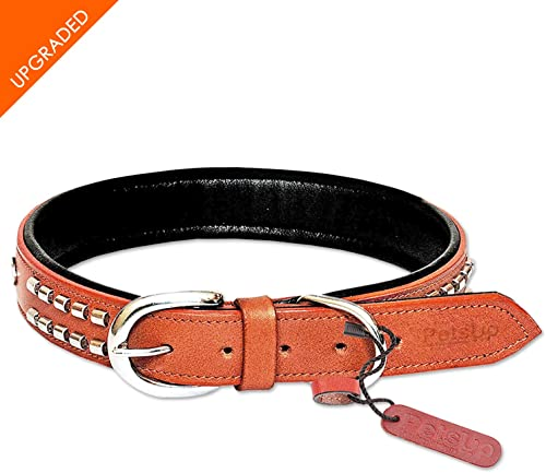 PetsUp Studded Dog Collar Neck Belt 1 pc. for Neck Size 17-21 inches (Medium) Tan
