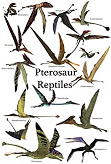 Poster of various flying pterosaur reptiles during the prehistoric age Poster Print by Corey FordStocktrek Images (11 x 17)