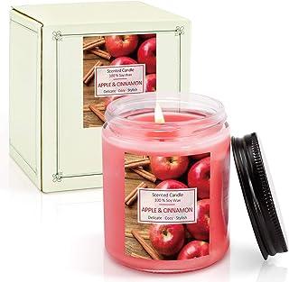 LA BELLEFÉE Velas Arománticas Grande Perfumadas con Aroma de manzana y canela 100% Cera de Soja Set de Regalos aliviar el ...