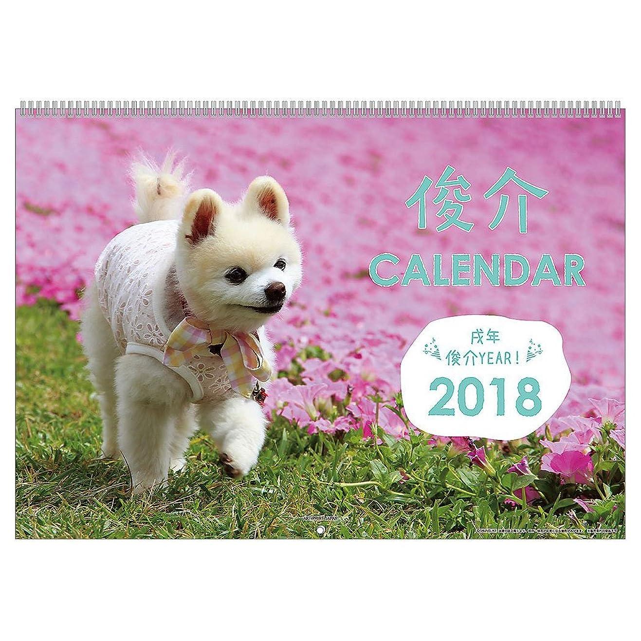 辛い霜バラエティアートプリントジャパン 2018年 俊介カレンダー No.022 1000093355