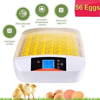 Sailnovo Egg Incubator with Automatic Egg Turning and Humidity Control, 56 Egg Incubators for Fertilized Eggs - Chicken Duck Goose Quail Turkey Tuttle Birds